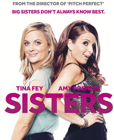 sisters movie review poster