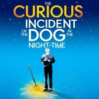 The Curious Incident of the Theatre Professor in the Broadway National Tour